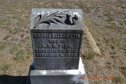 Sarah Elizabeth <i>Cawthon</i> Pior