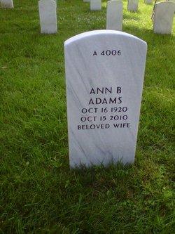 Ann B Adams
