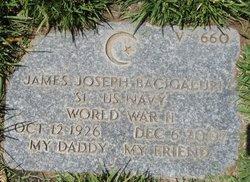 James Joseph Bacigalupi