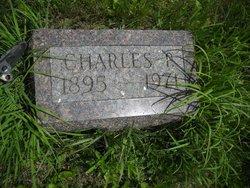 Charles Price Stech