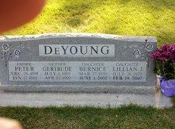 Peter De Young
