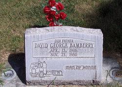 David George Bamberry