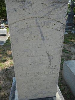 Caroline Elizabeth <i>Holt</i> Hill