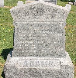 Sarah D <i>Ormsby</i> Adams