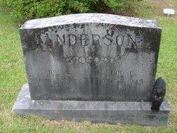 Sarah Lucinda Lou <i>Collins</i> Anderson
