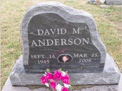 David M Anderson