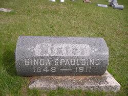 Icybinda <i>Hoskins</i> Spaulding