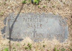 Patricia J <i>Werda</i> Baker