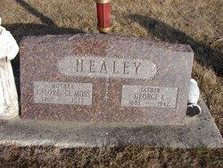 George E Healey
