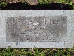 Antoinette Nettie <i>Porter</i> Adams