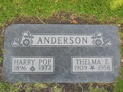 Thelma E Anderson