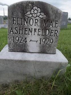 Elinor Mae Ashenfelder