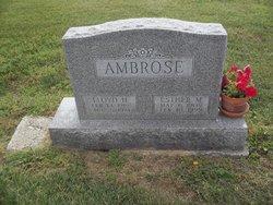 Lloyd Harry Ambrose