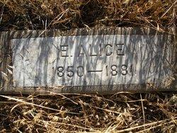 E. Alice Wilson