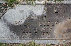 Rosa <i>Felder</i> Alford