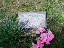 Elsie Gay <i>Phillips</i> Aldridge