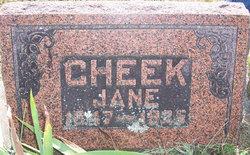 Nancy Jane Jane <i>Brown</i> Cheek