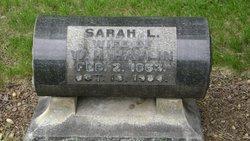Sarah L Havlin