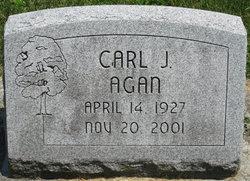 Carl J Agan