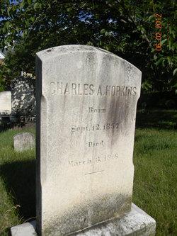 Charles A Hopkins