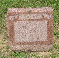 Mary Lynn Atkinson