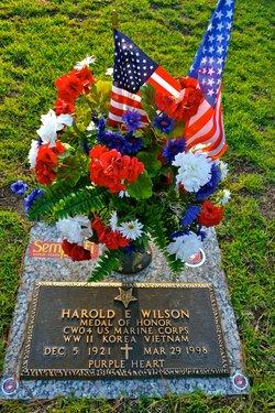 Harold Edward Speedy Wilson