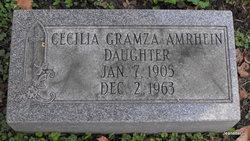 Cecilia <i>Gramza</i> Amrhein
