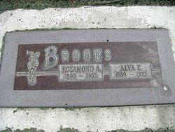 Alva Ernest Brooks