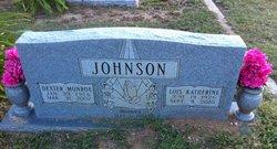 Lois Katherine <i>Chetum</i> Johnson