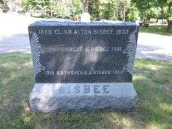 Eliab Alton Bisbee
