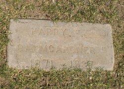 Harry E Baumgardner