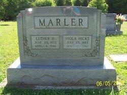 Viola <i>Hicks</i> Marler