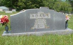 Bruce M Adams