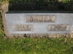 Ardis Flora <i>Rice</i> Bauer
