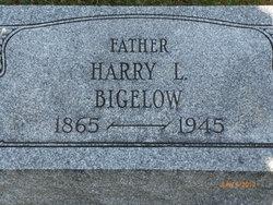 Harry Lawrence Bigelow