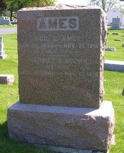Harriet D. <i>Brown</i> Ames