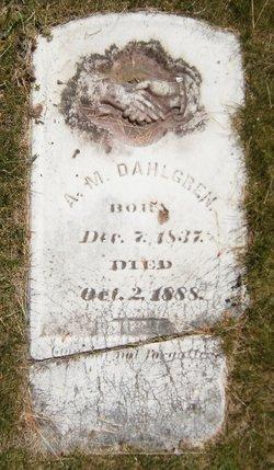 A. M. Dahlgren