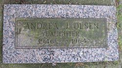 Andrea J Olsen