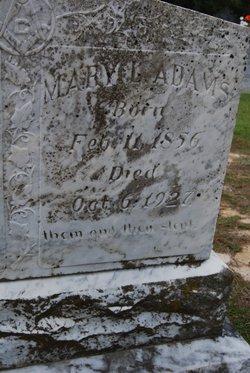 Mary Louisa <i>Stokes</i> Adams
