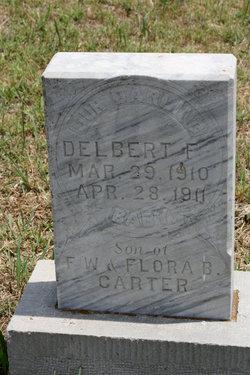 Delbert F Carter