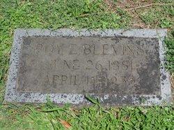 Roy E Blevins