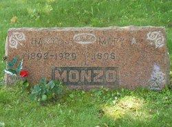 Harry J Monzo