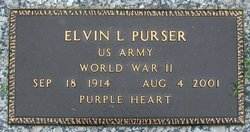 Elvin Levi Purser