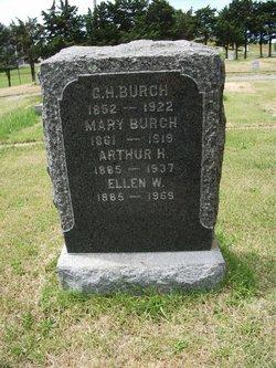 Arthur H Burch