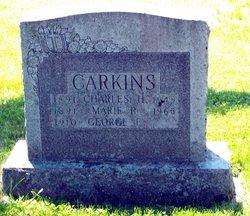 Mary Rosanna A <i>Labrique</i> Carkin