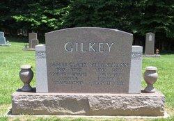 Virginia Ann Ginny <i>Hardin</i> Gilkey