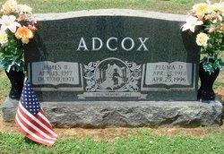 Pluma <i>Dobson</i> Adcox