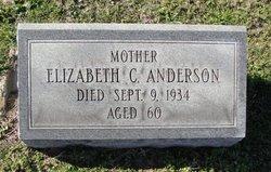 Elizabeth C Anderson