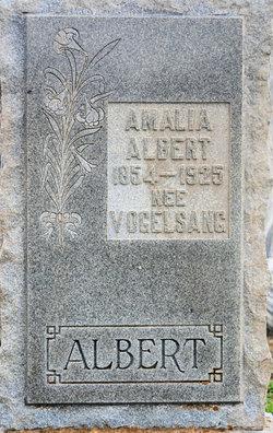 Amalia <i>Vogelsang</i> Albert