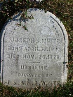 Joseph S White